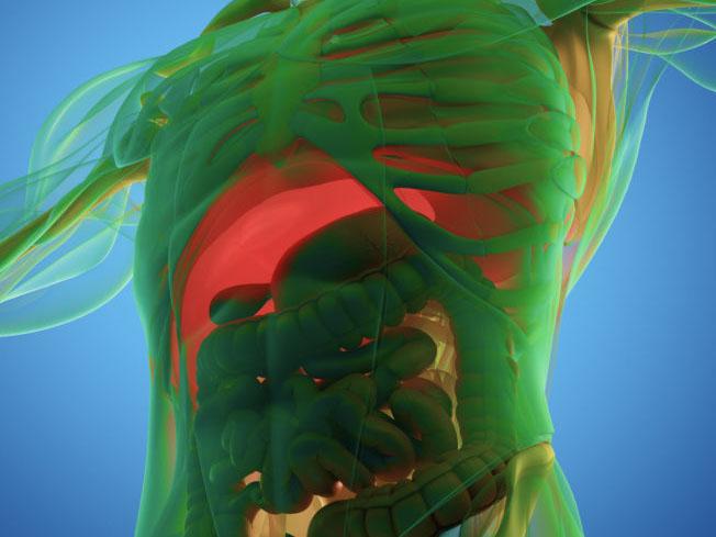 Seminar: Bioresonanztherapie und Skin Nutrition Zürich