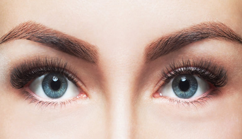 brows-and-lashes schulung zurich